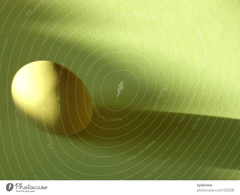 Ei des Kolumbus Stillleben Ostern Ernährung Lebensmittel Licht Produkt ökologisch Dinge Dekoration & Verzierung Schatten Natur