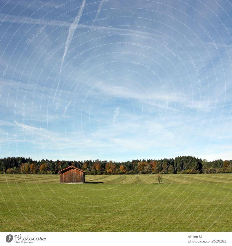 Die Wiese ist grün Natur Landschaft Himmel Herbst Schönes Wetter Gras Feld Wald Weide Hütte natürlich Erholung Freiheit ruhig Farbfoto mehrfarbig Außenaufnahme
