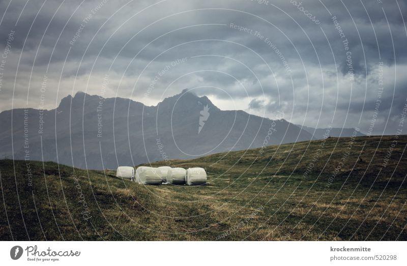 Winterproviant Umwelt Natur Landschaft Himmel Wolken Gewitterwolken Wetter schlechtes Wetter Wind Sturm Pflanze Gras Hügel Felsen Alpen Berge u. Gebirge Gipfel