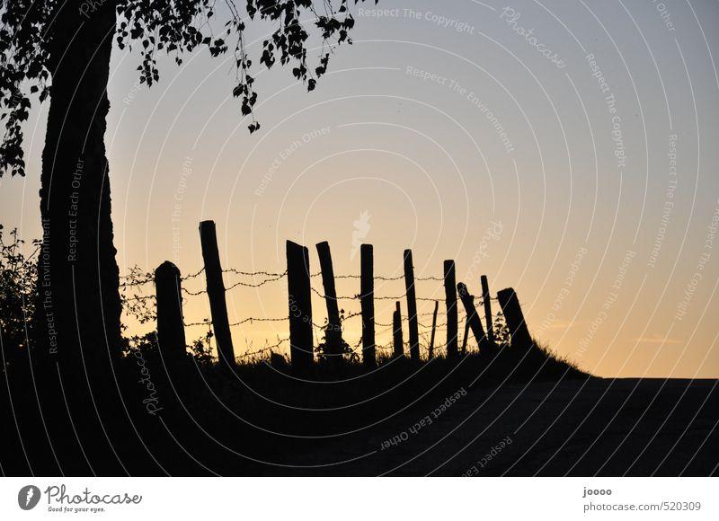 Umzäunter Sonnenuntergang Natur ruhig Wege & Pfade Horizont träumen ästhetisch Sicherheit planen Wolkenloser Himmel Kontrolle