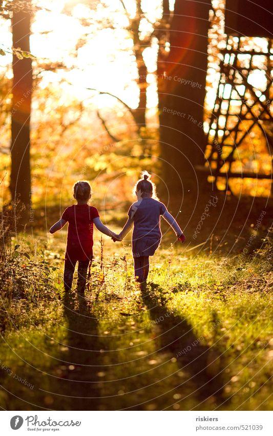 it´s a beautiful day Mensch feminin Kind Mädchen Geschwister Schwester Kindheit 2 3-8 Jahre Natur Sonne Herbst Schönes Wetter Wald entdecken Erholung leuchten