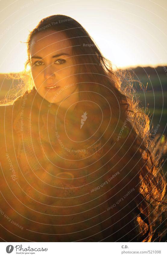 Sylvia feminin Junge Frau Jugendliche 18-30 Jahre Erwachsene brünett langhaarig schön Warmherzigkeit Sonnenlicht Herbst Farbfoto Abend Gegenlicht