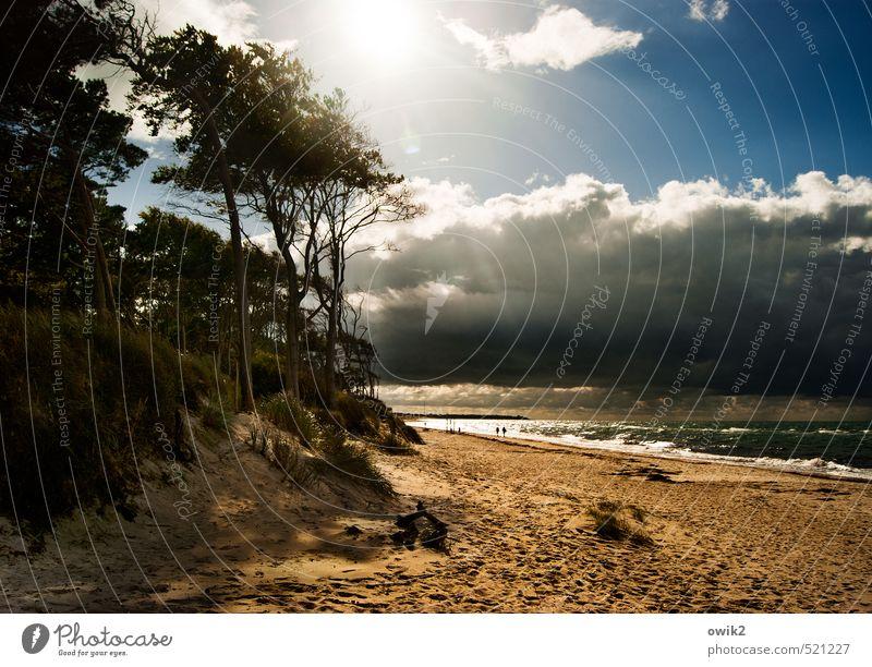 Lichteltrip Ferne Freiheit wandern Mensch 2 Umwelt Natur Landschaft Sand Wasser Himmel Wolken Gewitterwolken Klima Schönes Wetter Küste Ostsee Weststrand gehen