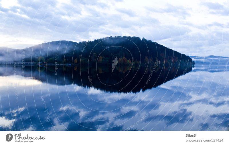 Schluchsee die Zweite Natur Wasser Himmel Wolken Herbst Nebel Baum Wald Hügel See blau braun gelb gold grün Farbfoto Außenaufnahme Menschenleer Abend