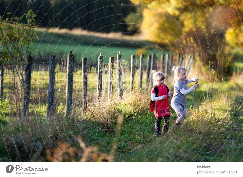 letzter bunter herbsttag Mensch Kind Natur Landschaft Mädchen Freude Wald Umwelt Wiese feminin Herbst Glück natürlich Kindheit Zufriedenheit frei