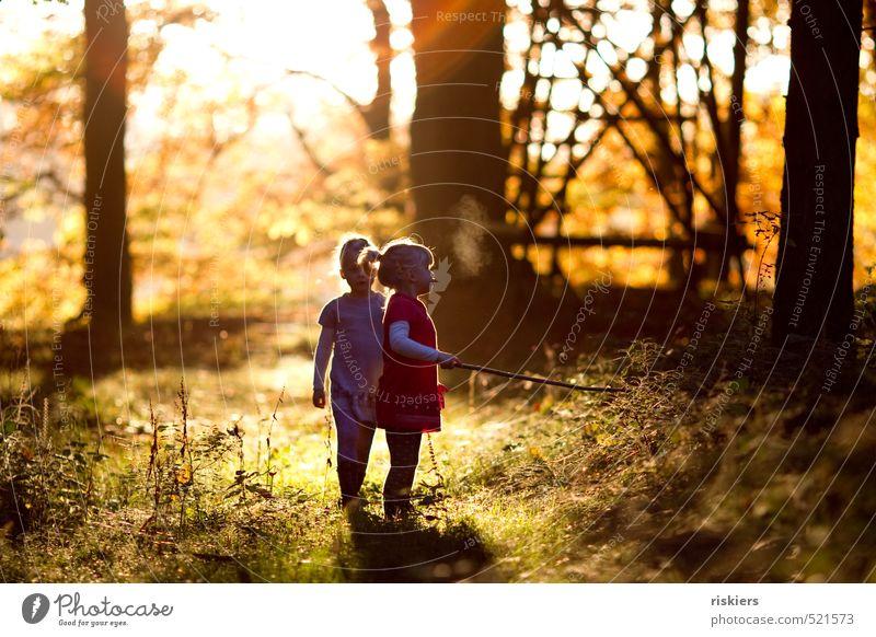 don´t think about tomorrow Mensch feminin Kind Mädchen Geschwister Schwester Kindheit 2 3-8 Jahre Umwelt Natur Sommer Herbst Schönes Wetter Wald entdecken Blick