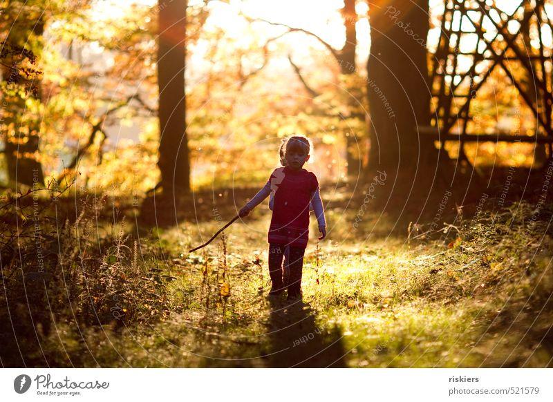 and enjoy the moment Mensch Kind Natur Landschaft Mädchen Freude Wald Herbst Glück natürlich glänzend gold Kindheit leuchten frei authentisch