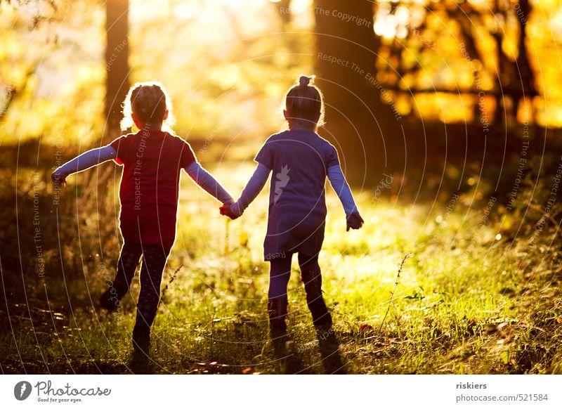 a day that should never end Mensch Kind Natur Sommer Sonne Landschaft Mädchen Freude Wald feminin Herbst Glück natürlich Kindheit Zufriedenheit laufen