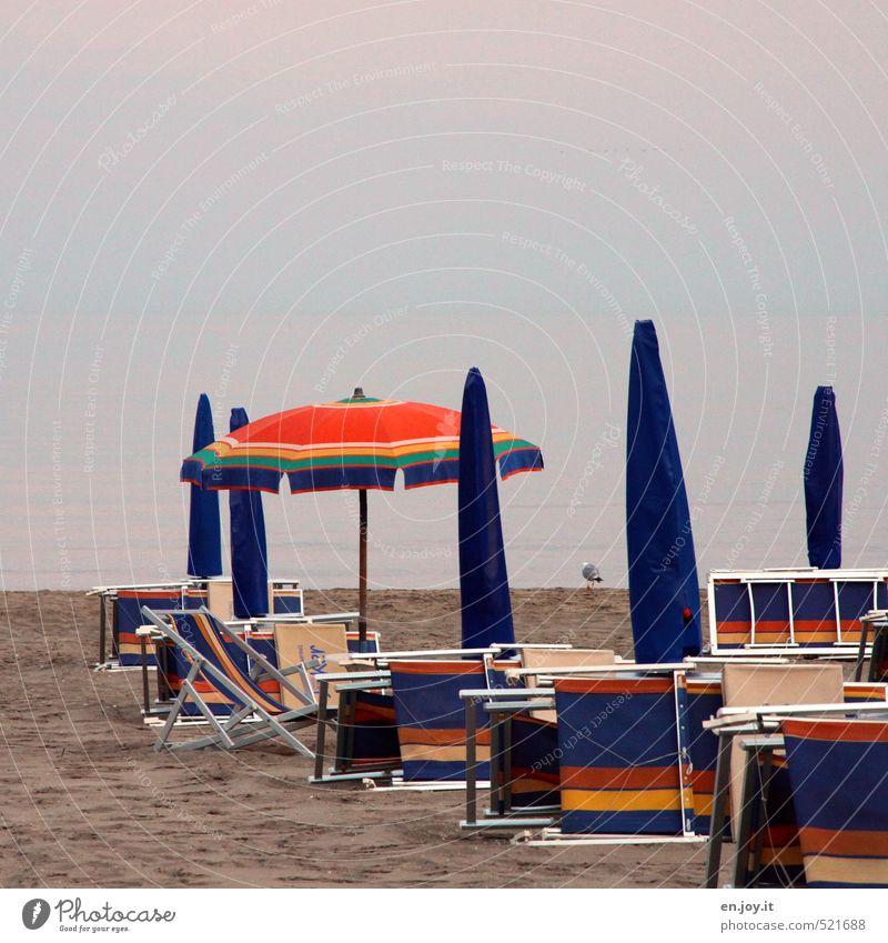 Strandleben Himmel Ferien & Urlaub & Reisen blau Sommer Meer Erholung ruhig kalt Umwelt Schwimmen & Baden Horizont Vogel Wetter orange Klima