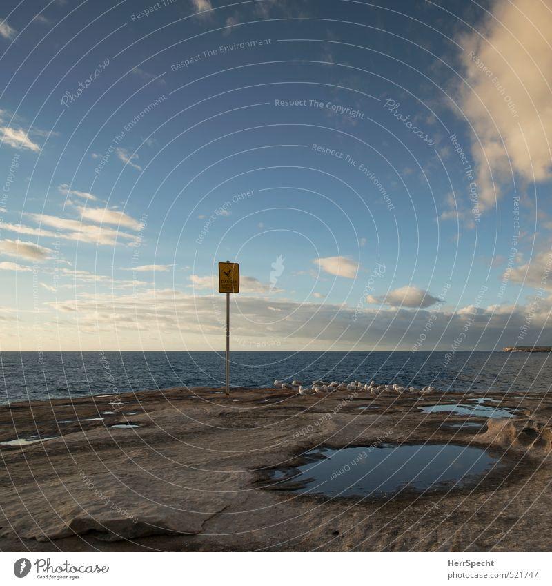 Do not go near the edge Himmel Natur blau Meer Landschaft Wolken Umwelt Küste grau natürlich Horizont Vogel Wildtier Schönes Wetter gefährlich Hinweisschild