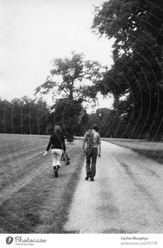 Goodbye Frau Mann Baum Liebe Wald Herbst Wiese Paar Wege & Pfade Park Freundschaft paarweise Spaziergang Vertrauen Abschied