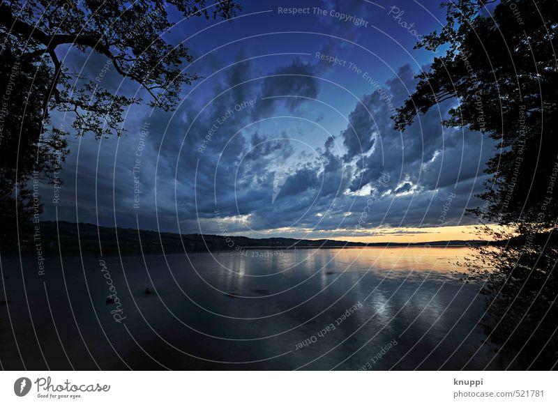 Fluchtpunkt Himmel Natur Pflanze blau Sommer Wasser Sonne Baum Landschaft Wolken schwarz Umwelt gelb Freiheit See Horizont