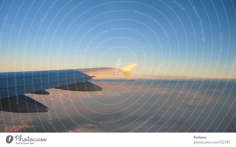 away Wolken Ferien & Urlaub & Reisen Flugzeug Abenddämmerung Tragflächenspitze fliegen Flügel Himmel