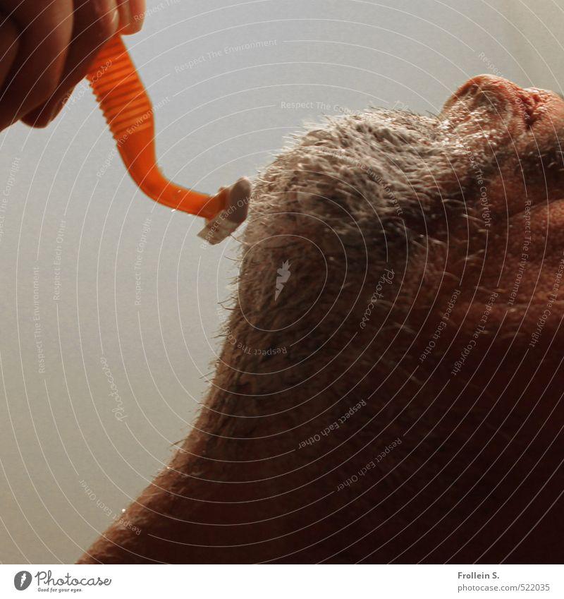 Killing me softly Mensch Erwachsene Haare & Frisuren orange maskulin 45-60 Jahre Finger Scharfer Gegenstand Lippen Bart Konzentration Körperpflege Hals Kinn Dreitagebart Rasieren
