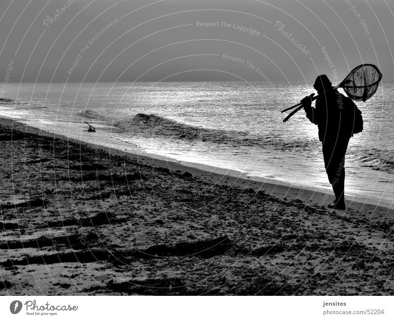 searchin' Mann Wasser Sonne Meer Strand Winter Deutschland Wellen Suche Ostsee Jaipur Bernstein