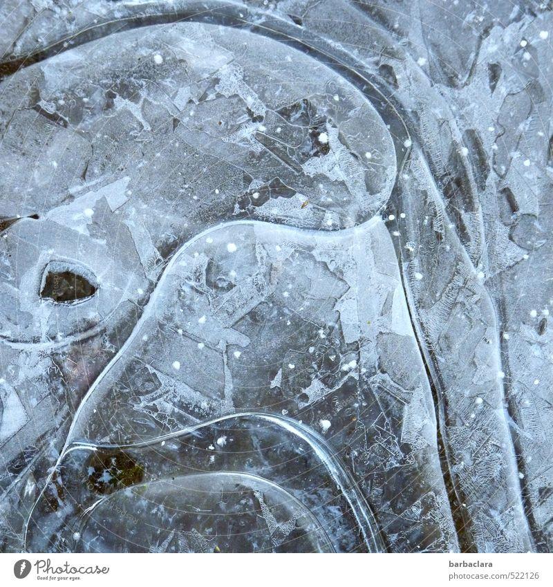 Eiskunst Natur blau Wasser Winter kalt Stil außergewöhnlich Linie Eis Erde wild ästhetisch Kreativität Frost Zeichen fest