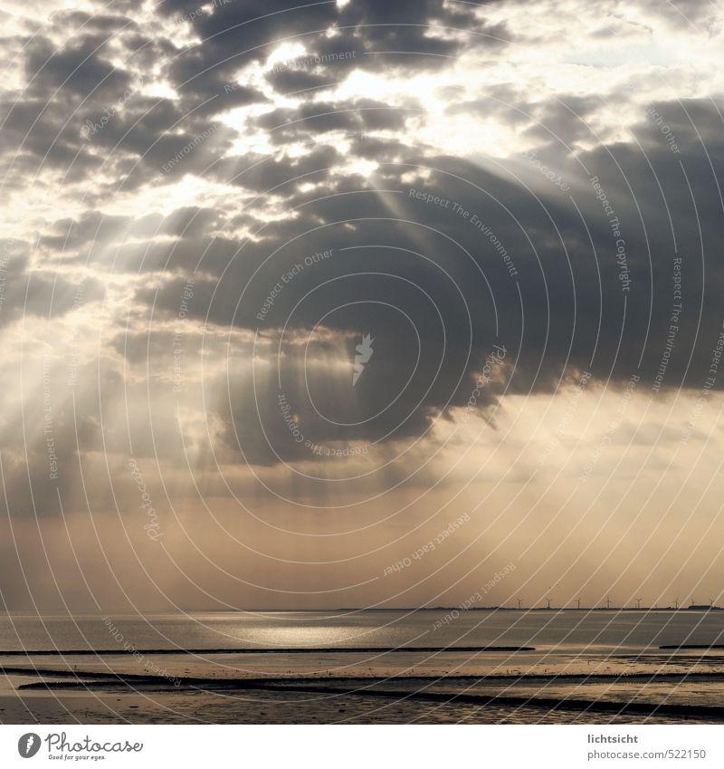 The Shining Umwelt Natur Landschaft Urelemente Wasser Wolken Gewitterwolken Horizont Sonnenlicht Wetter Schönes Wetter Küste Nordsee Meer ästhetisch