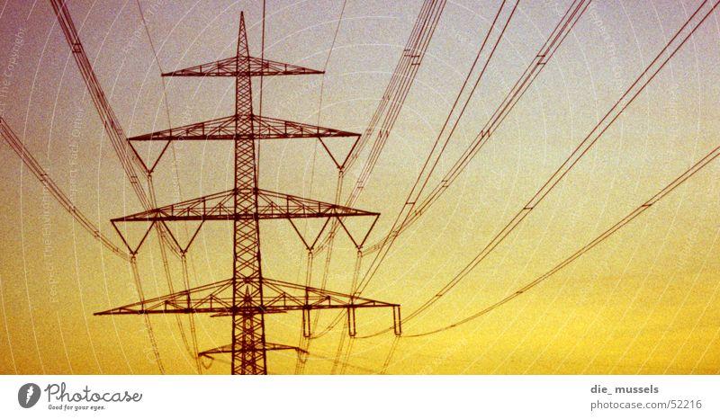 unter der leitung von ... Elektrizität Strommast Sonnenuntergang Leitung Kabel