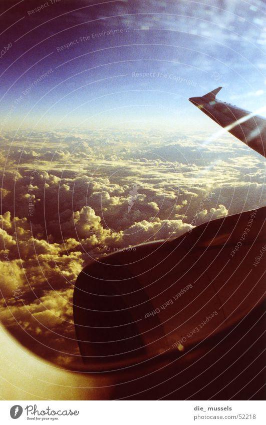 vogelperspektive Himmel Wolken Flugzeug fliegen