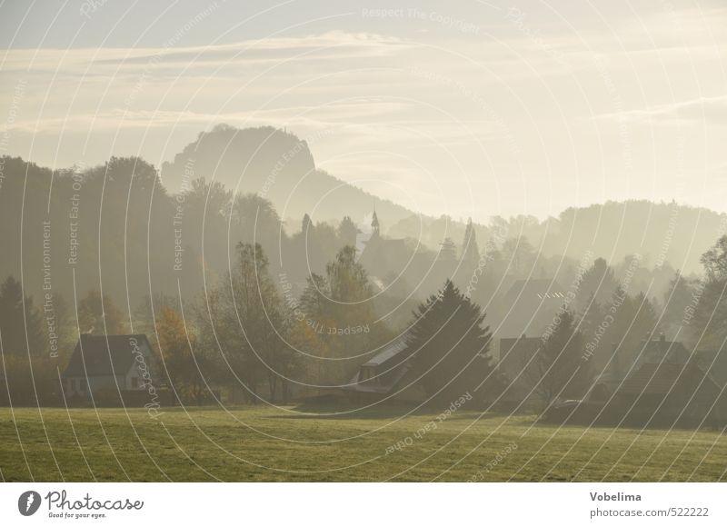 Morgen im Elbsandsteingebirge Ferien & Urlaub & Reisen Umwelt Landschaft Himmel Wetter Nebel Wiese Hügel Felsen Berge u. Gebirge Gipfel Thürmsdorf struppen