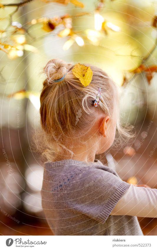 sweet autumn Mensch Kind Erholung ruhig Mädchen feminin Glück natürlich träumen Idylle blond Kindheit Zufriedenheit frei frisch Fröhlichkeit