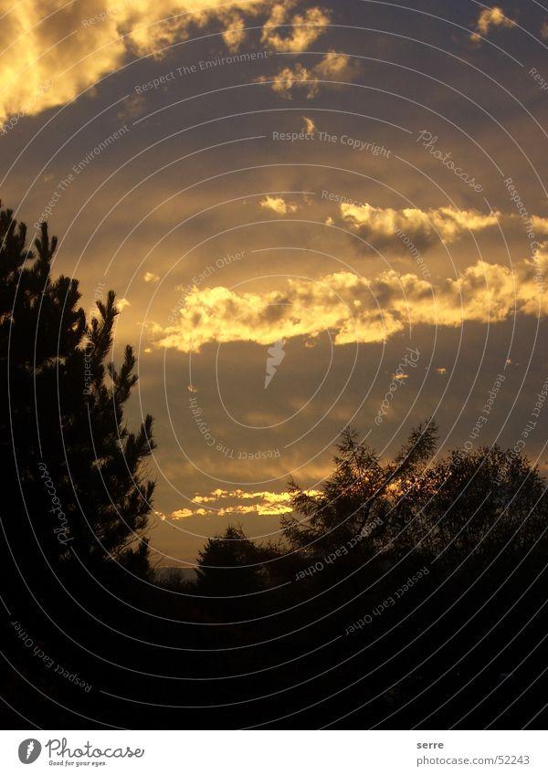 Wolken bei Sonnenuntergang Himmel Baum dunkel hell leuchten Gott Endzeitstimmung Naturphänomene Götter