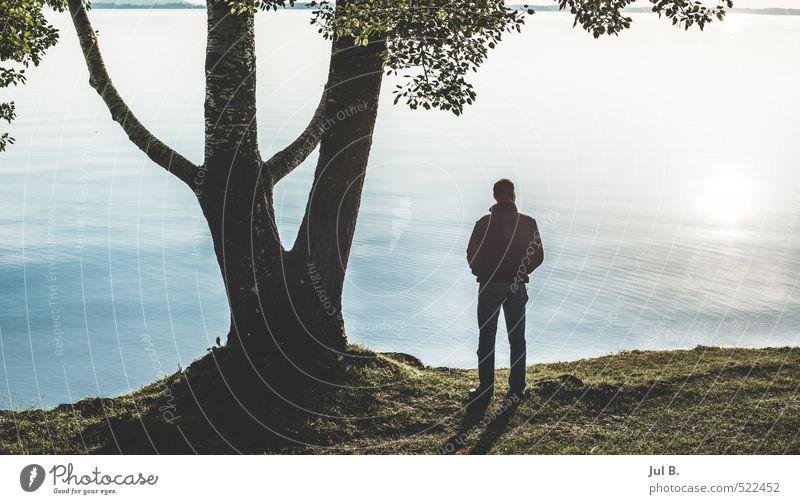 genießen Junger Mann Jugendliche Körper Umwelt Natur Landschaft Baum Blatt See Stimmung Freude Farbfoto Außenaufnahme Abend