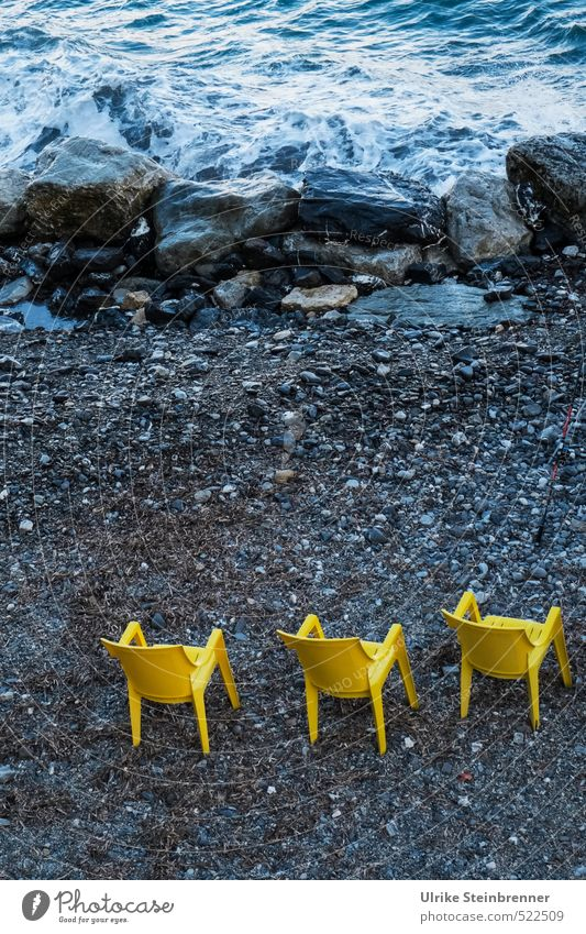 Trio giallo Natur Wasser Meer Landschaft gelb Herbst Küste Stil Felsen Zusammensein Freizeit & Hobby Erde Wellen warten stehen 3