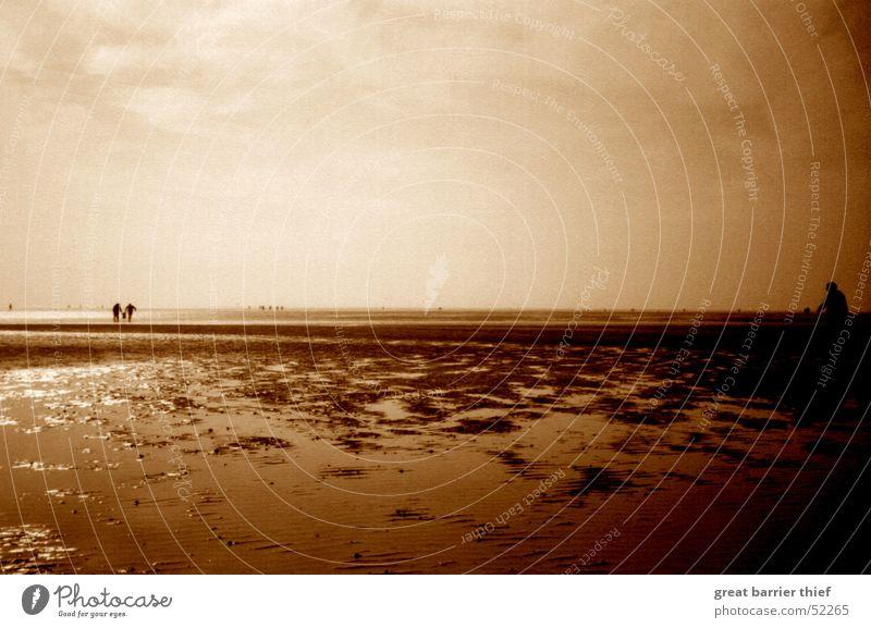 the moody side of life Mensch Natur Wasser Himmel Meer Sommer Strand ruhig Wolken Ferne Sand Landschaft Stimmung braun Küste nass