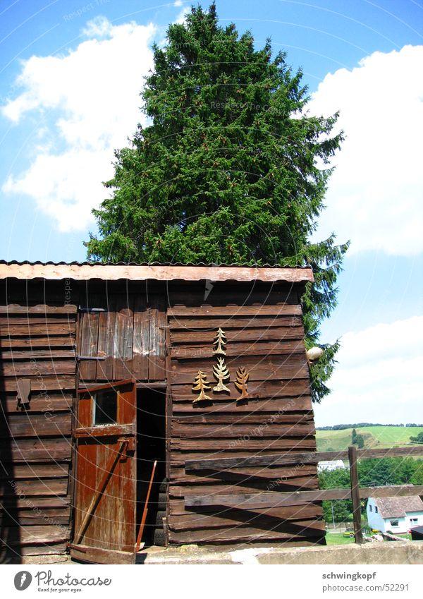 Eifel Schuppen Natur Himmel Baum Sonne grün blau Haus Wolken Holz braun Tür offen Kitsch Hütte Weide Zaun