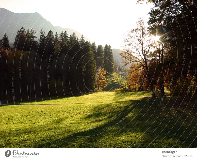 Sonnendurchflutet Baum Wald grün Herbst Hügel Sonnenlicht Physik angenehm Blatt mehrfarbig Wiese saftig Rasen Tempel weiß ruhig Außenaufnahme Holzmehl Himmel