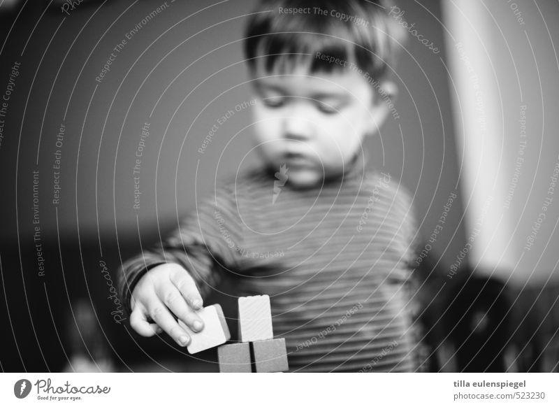 Baumeister maskulin Kleinkind Kindheit 1 Mensch 1-3 Jahre kurzhaarig bauen Spielen Konzentration Baustein lernen Versuch Stapel Junge Aktion Schwarzweißfoto
