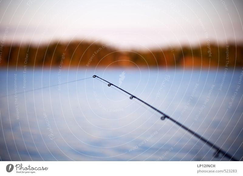 Aus der Mitte entspringt kein Fluß Angeln Ferien & Urlaub & Reisen Ausflug Freiheit Camping Sommerurlaub Umwelt Natur Landschaft Wasser Wald Küste Seeufer
