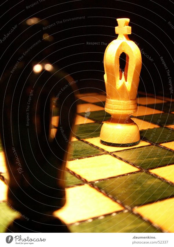 Duell Schachfigur Schachbrett Holz Quadrat Dame kariert grün weiß schwarz dunkel Licht böse Spielen planen Eisenbahn Konzentration Makroaufnahme Nahaufnahme