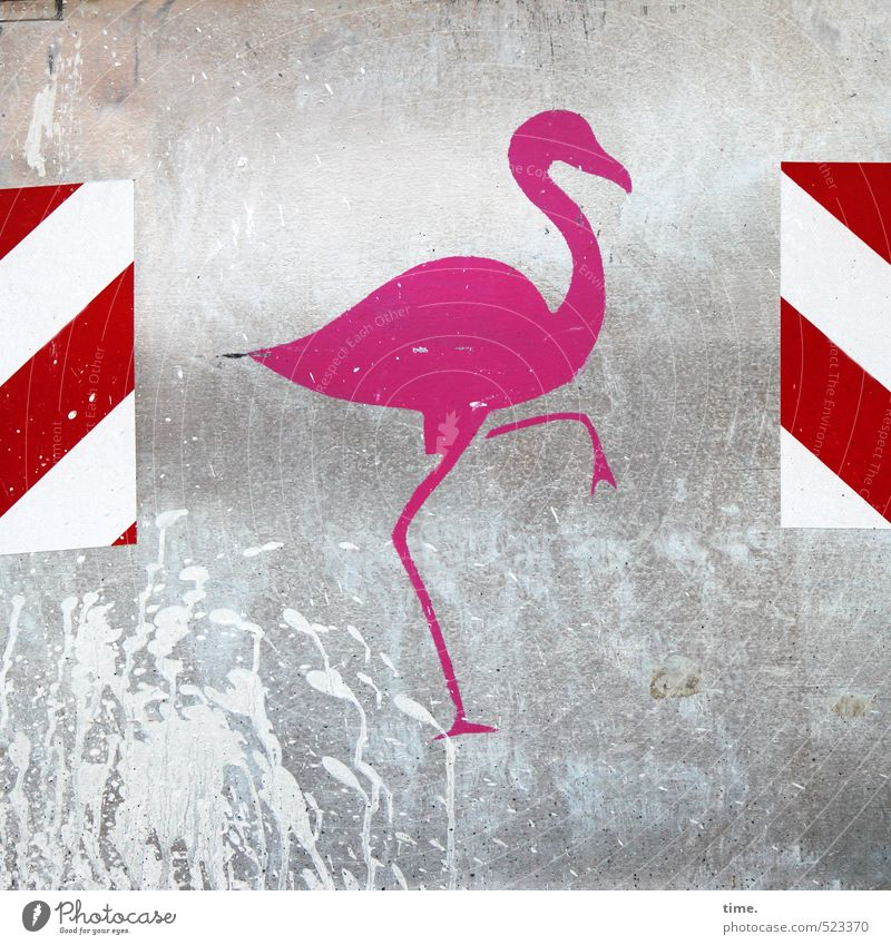 Tanz | Step One Baustelle Container Bauschutt Dienstleistungsgewerbe Handwerk Tier Flamingo 1 Dekoration & Verzierung Metall Kunststoff Schilder & Markierungen
