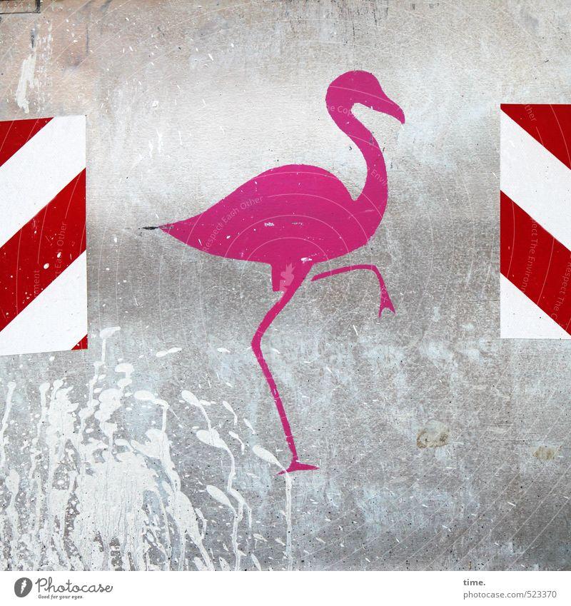 Tanz | Step One Stadt rot Tier Graffiti Metall rosa glänzend Schilder & Markierungen Dekoration & Verzierung Hinweisschild ästhetisch Vergänglichkeit Sicherheit