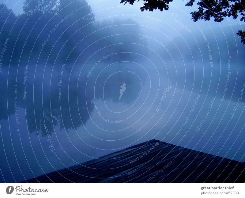 morning mood Natur Wasser Baum blau ruhig Tier Erholung Herbst Freiheit See Landschaft Luft Stimmung Nebel Wetter Umwelt