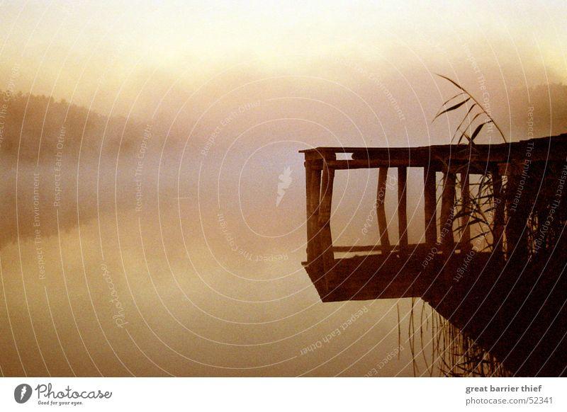 See Steg Nebel Wasser Himmel Natur Wasser Ferien & Urlaub & Reisen Sommer Strand Tier Ferne Umwelt Landschaft Freiheit Holz Glück Küste See Stimmung