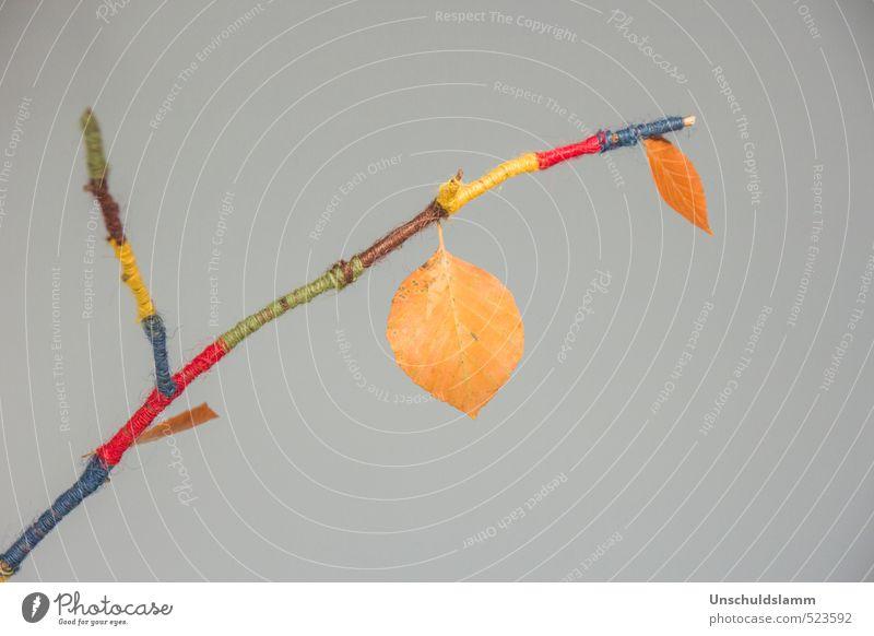 Herbstkleid Natur Blatt grau Stil Mode orange Freizeit & Hobby Wohnung Häusliches Leben Lifestyle Design Dekoration & Verzierung Fröhlichkeit ästhetisch