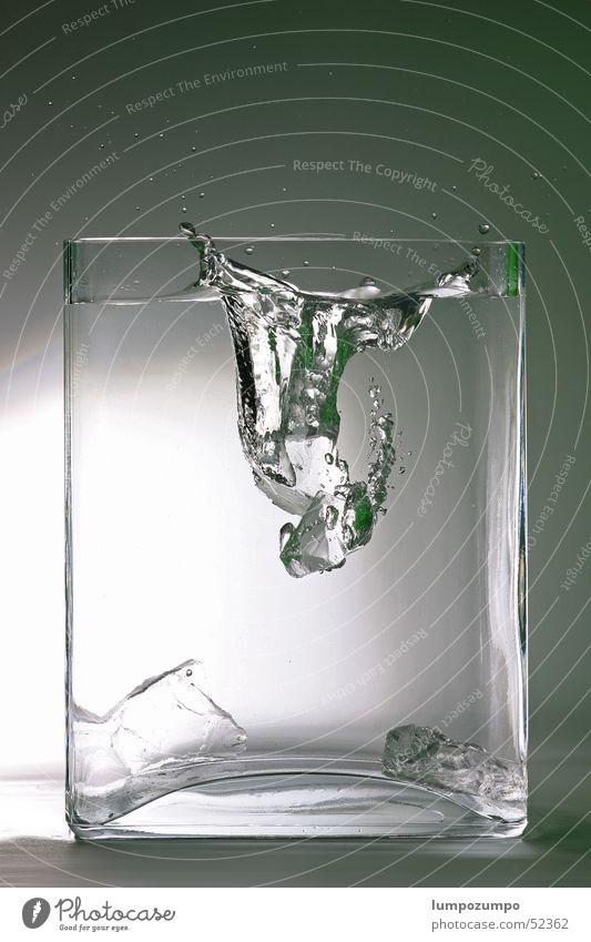splash nass feucht spritzen Eiswürfel frisch kalt Schnellzug Sauberkeit rein ursprünglich Wasser cold fresh water clean Klarheit clear