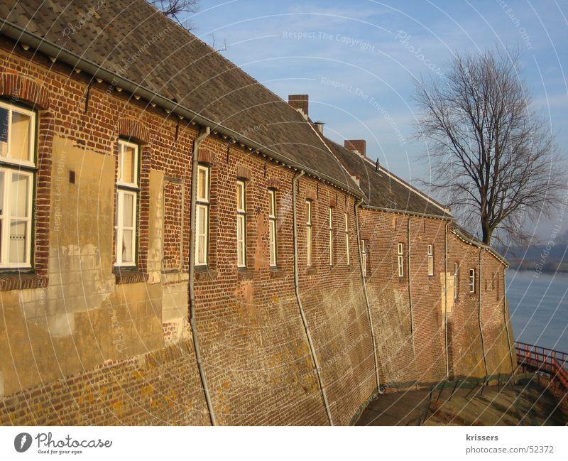 Klinker im Sonnenlicht Backstein Haus alt Baum ohne Blatt Maas See Meer Niederlande rot braun Freundlichkeit Herbst Winter Altbau Wasser Fluss Abwasserkanal