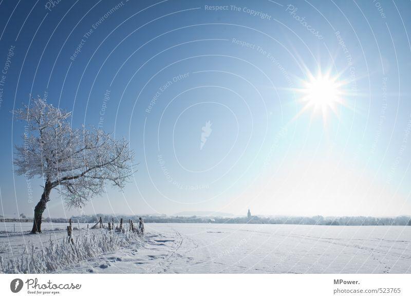 heiß&kalt Umwelt Horizont Ferne Natur Landschaft Wasser Schönes Wetter Eis Frost Schnee hell Coolness Schneelandschaft Baum gefroren Wolkenloser Himmel blau