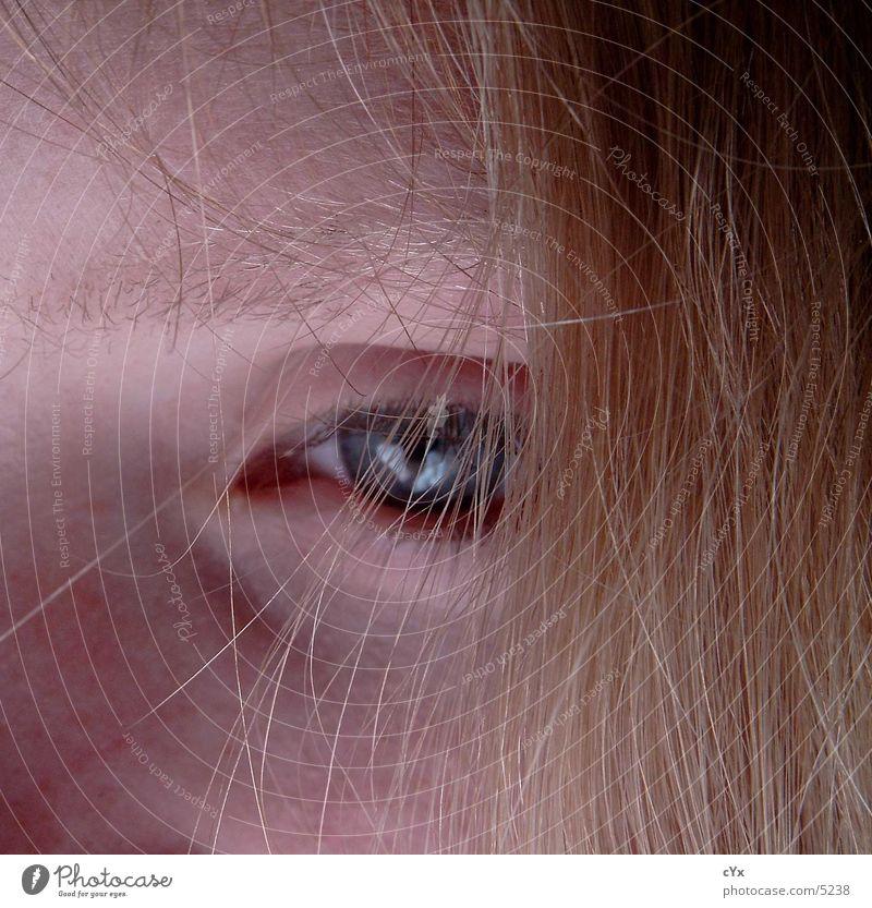haarig blond verdeckt Augenbraue Wimpern Mensch Haare & Frisuren Gesicht Detailaufnahme Blick