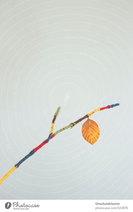 Last leaf before X-mas Lifestyle Stil Freizeit & Hobby Basteln Häusliches Leben Wohnung Innenarchitektur Dekoration & Verzierung Herbst Blatt Zweige u. Äste