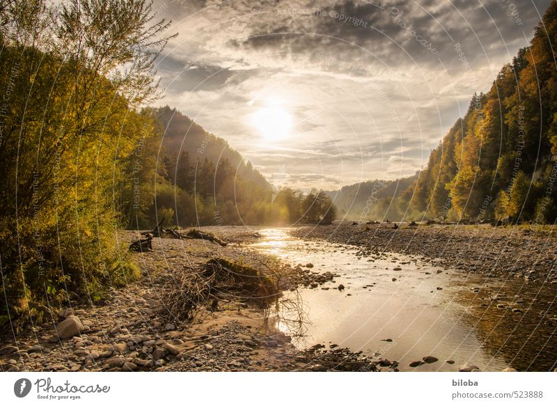 Sense Wasser Sonne Einsamkeit Landschaft Wolken Wald Gefühle Herbst Hoffnung Lebensfreude Fluss Flussufer Schweiz HDR