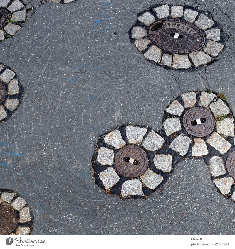 Blumen Verkehrswege Straße Wege & Pfade Stein grau Gully Blumenmuster Straßenbelag Kanalisation Gasleitung Farbfoto Gedeckte Farben Außenaufnahme Nahaufnahme
