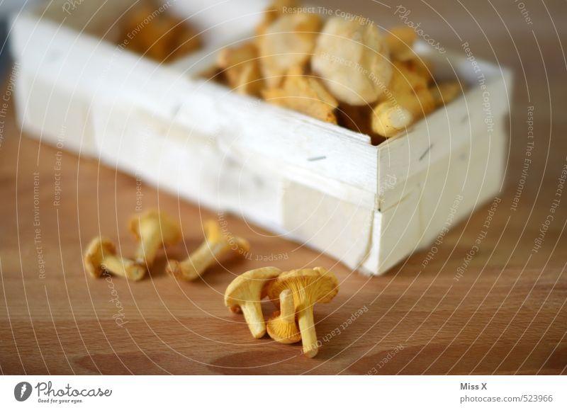 Pfifferling gelb Herbst Gesundheit Lebensmittel frisch Ernährung Kochen & Garen & Backen lecker Bioprodukte Sammlung Pilz Schalen & Schüsseln Mahlzeit Korb