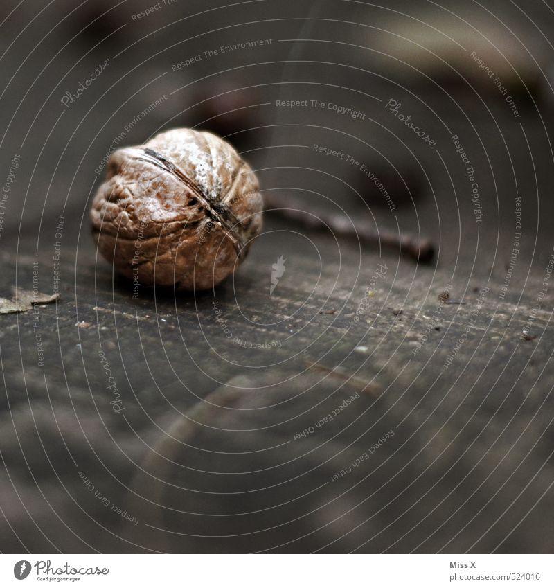 Walnuss Lebensmittel Ernährung Vegetarische Ernährung dunkel Gesundheit lecker Gesunde Ernährung Nuss Nussschale Walnusskern Holz Stillleben Farbfoto