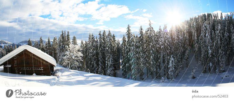 Hüttenpanorama Baum Sonne Winter Wald kalt Schnee groß Panorama (Bildformat) Alm Tiefschnee