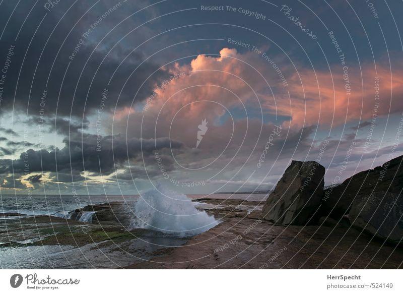 Before Sunrise Umwelt Natur Wasser Himmel Wolken Wetter Felsen Wellen Küste Meer Pazifik Sydney Australien ästhetisch außergewöhnlich schön Dämmerung
